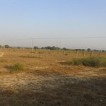 Latest Pictures Of Mehdia City Land